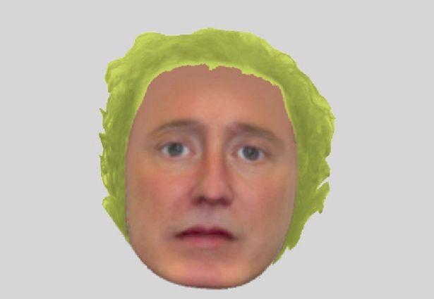 lettuce-e-fit