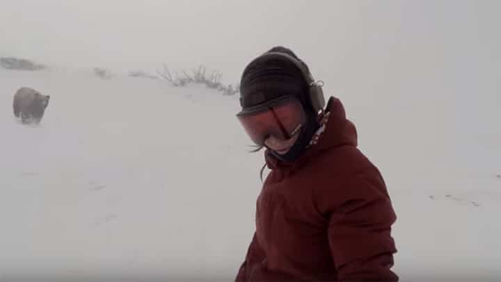 snow boarder chased by bear