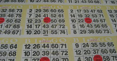 A Gaming Lifestyle: How Mini Me and Mobiles Transformed Bingo